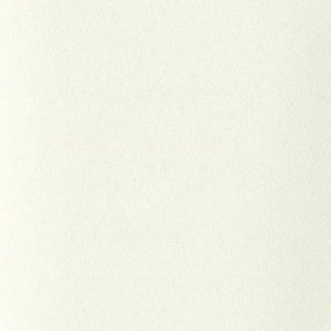 Белый ZB 850-2